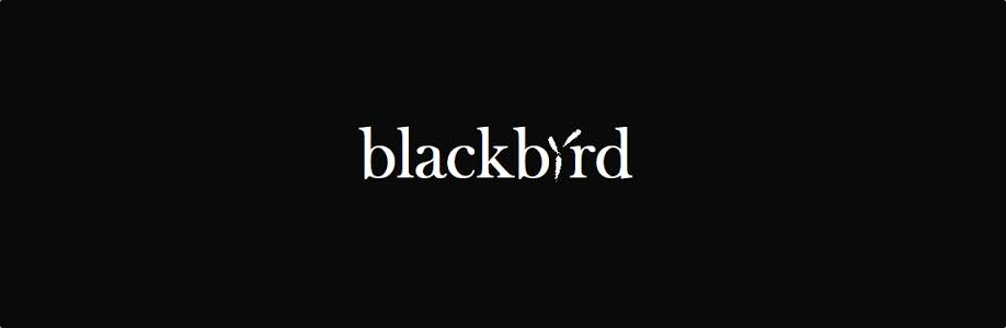 Blackbird Audio Rentals